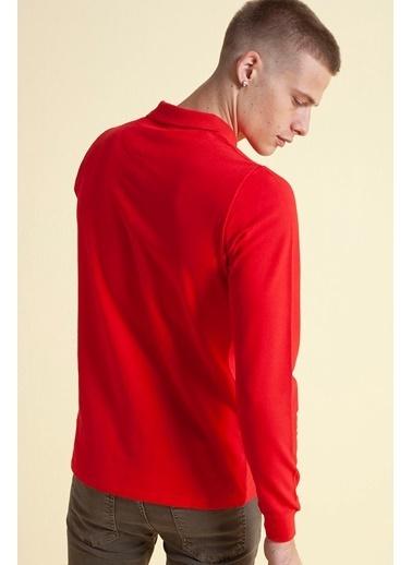 Fashion Friends Sweatshirt Bordo